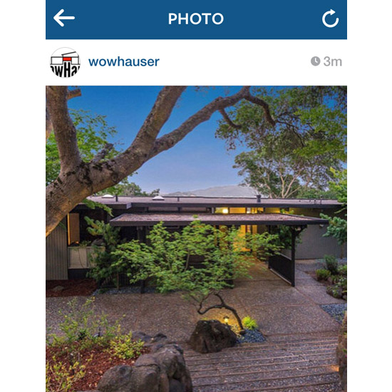 WowHaus is now on Instagram