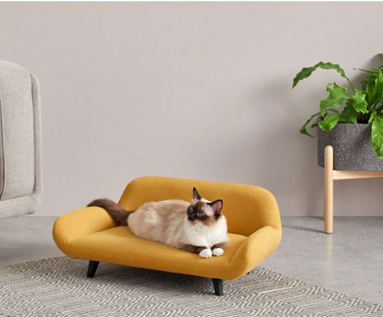 Midcentury modern pet sofas now available at Made